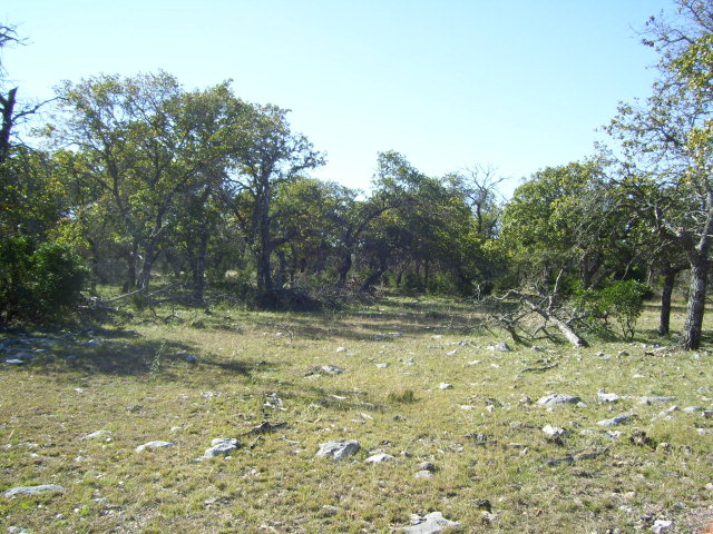 337 w Old Reagan Wells Rd., Leakey, TX 78873