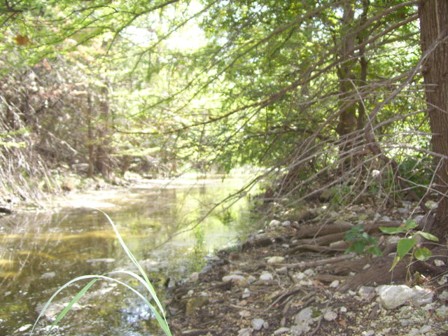 ooo n Bluff Creek Rd, Leakey, TX 78873