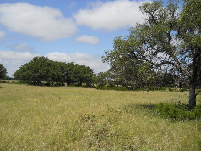 Other, Rocksprings, TX 78880