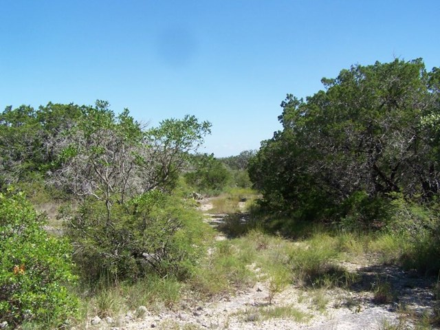 150 Other, Concan, TX 78838