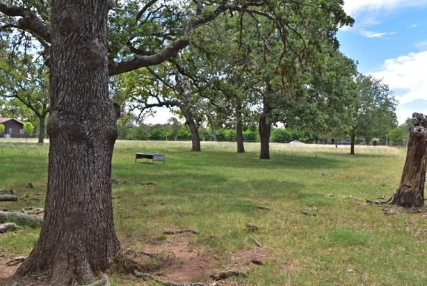 Friendship Lane, Fredericksburg, TX 78624