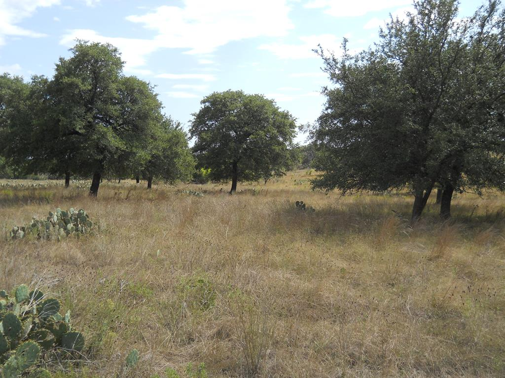 Hunting ranches for sale in Texas Hill Country