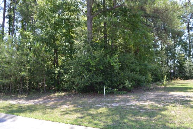 3090  Lowfalls Lane Sumter, SC 29150