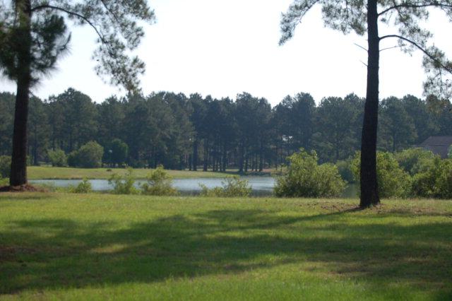 421 Pine Lake Ct. Manning, SC 29102