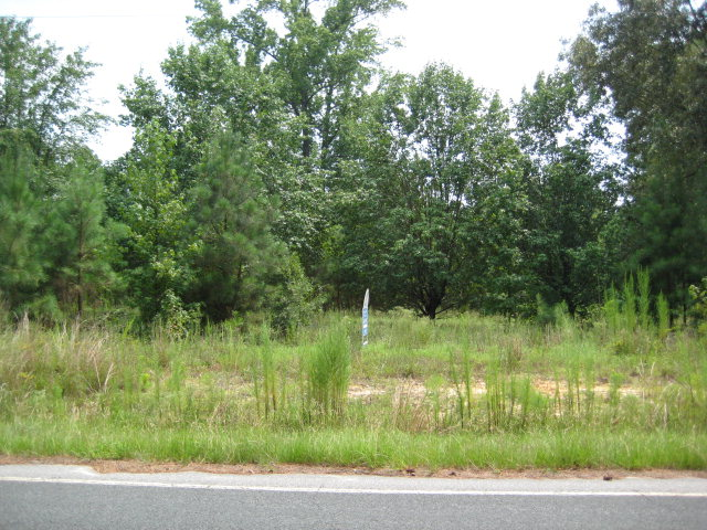 0 Calhoun St Ext (Oswego Hwy) Sumter, SC 29150