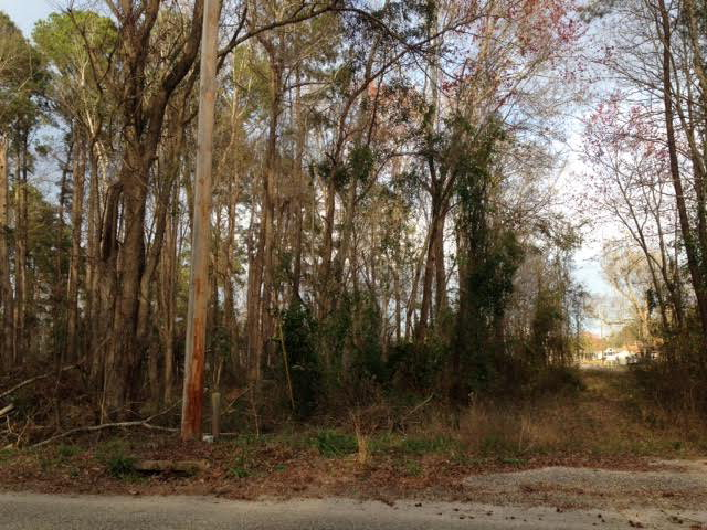 Lot 165  Brantley Avenue Summerton, SC 29148