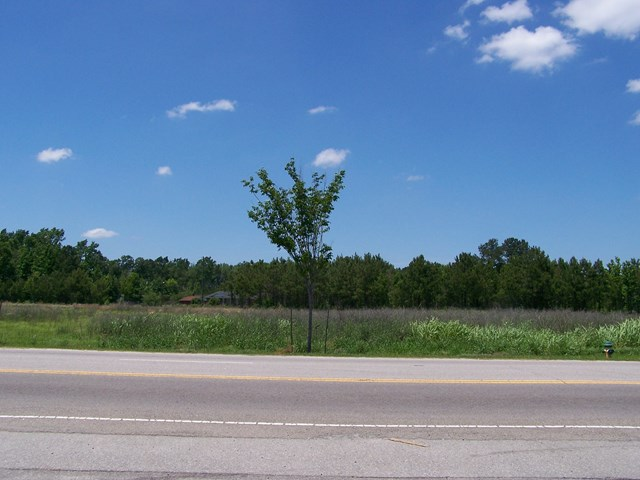 TBD  Highway 15 and 301 Santee Cooper, SC 29142
