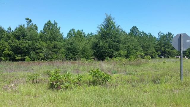 0  Spots Rd / Erica Lane Wedgefield, SC 29168