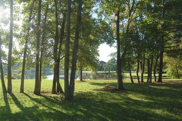 11 Ridge Lake Drive Manning, SC 29102