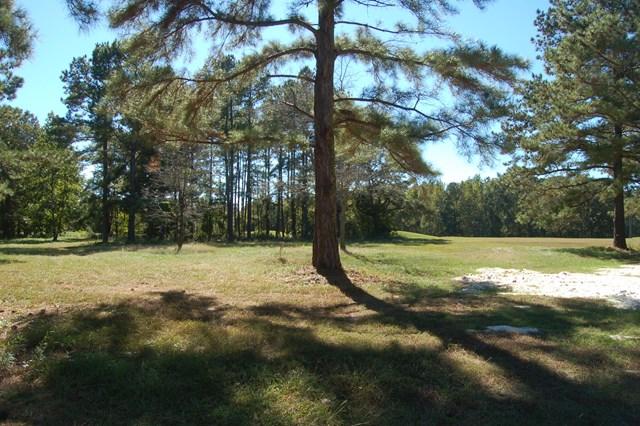 417 Pine Lake Ct. Manning, SC 29102