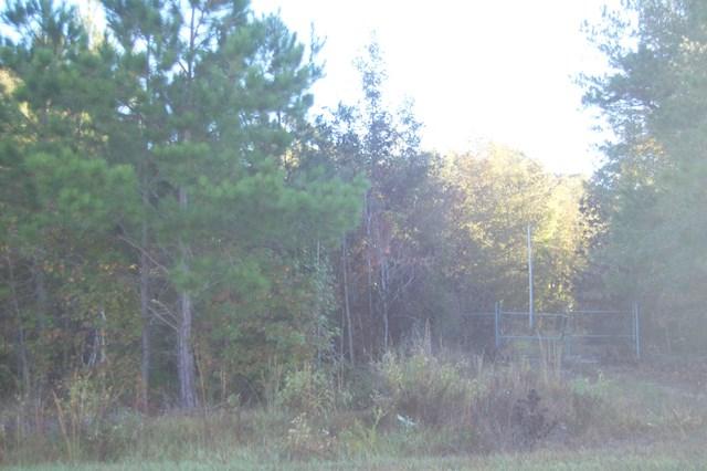 TBD White Oak Drive Manning, SC 29102