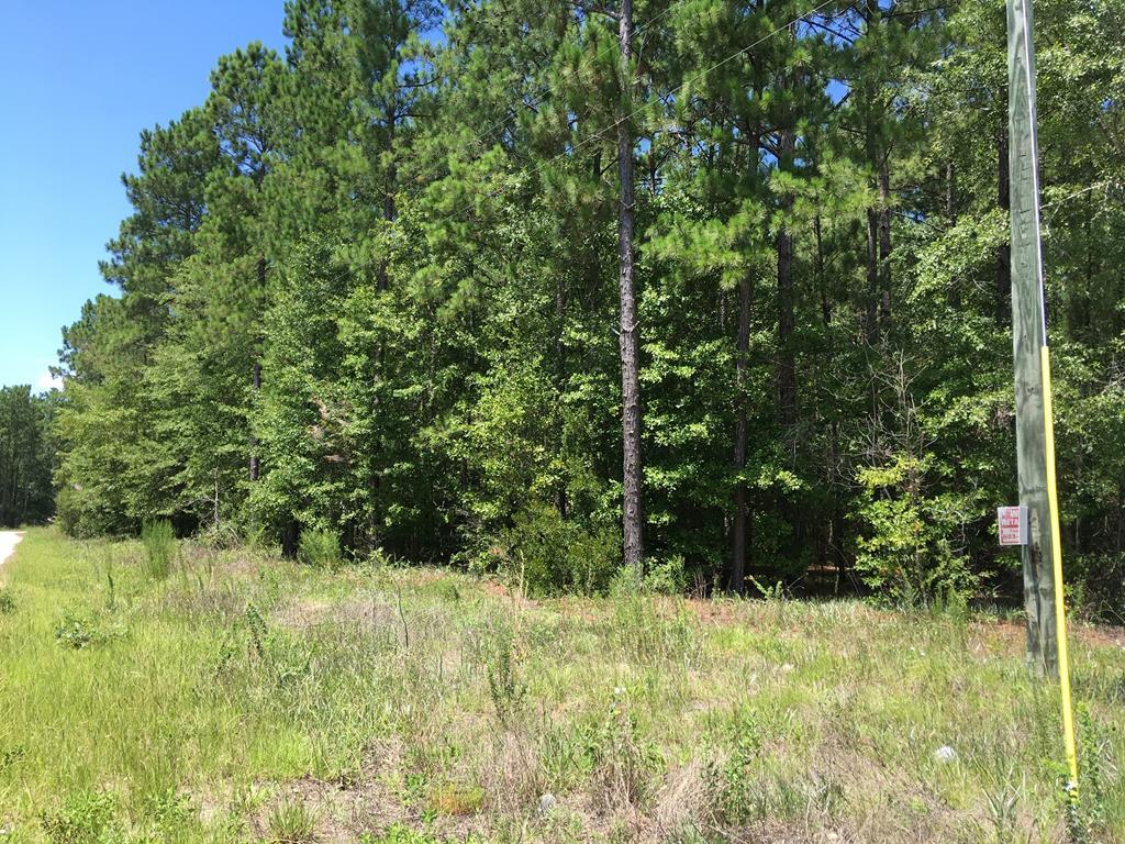 1307 Hidden Oak Drive Manning, SC 29102
