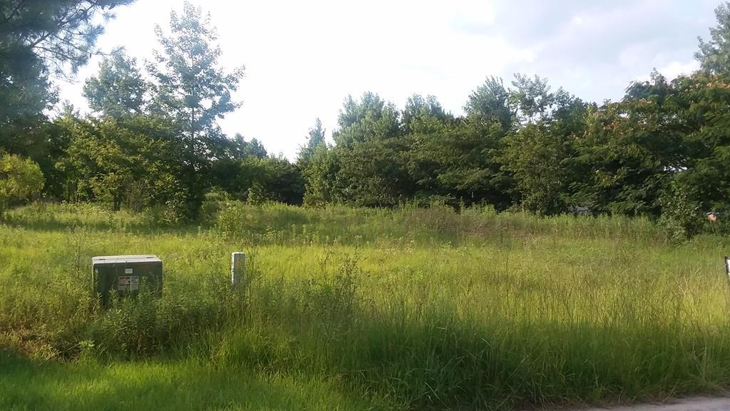 1333 McNair Drive Summerton, SC 29148