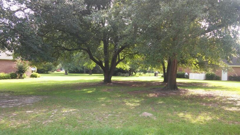 109 Oakview Circle Manning, SC 29102