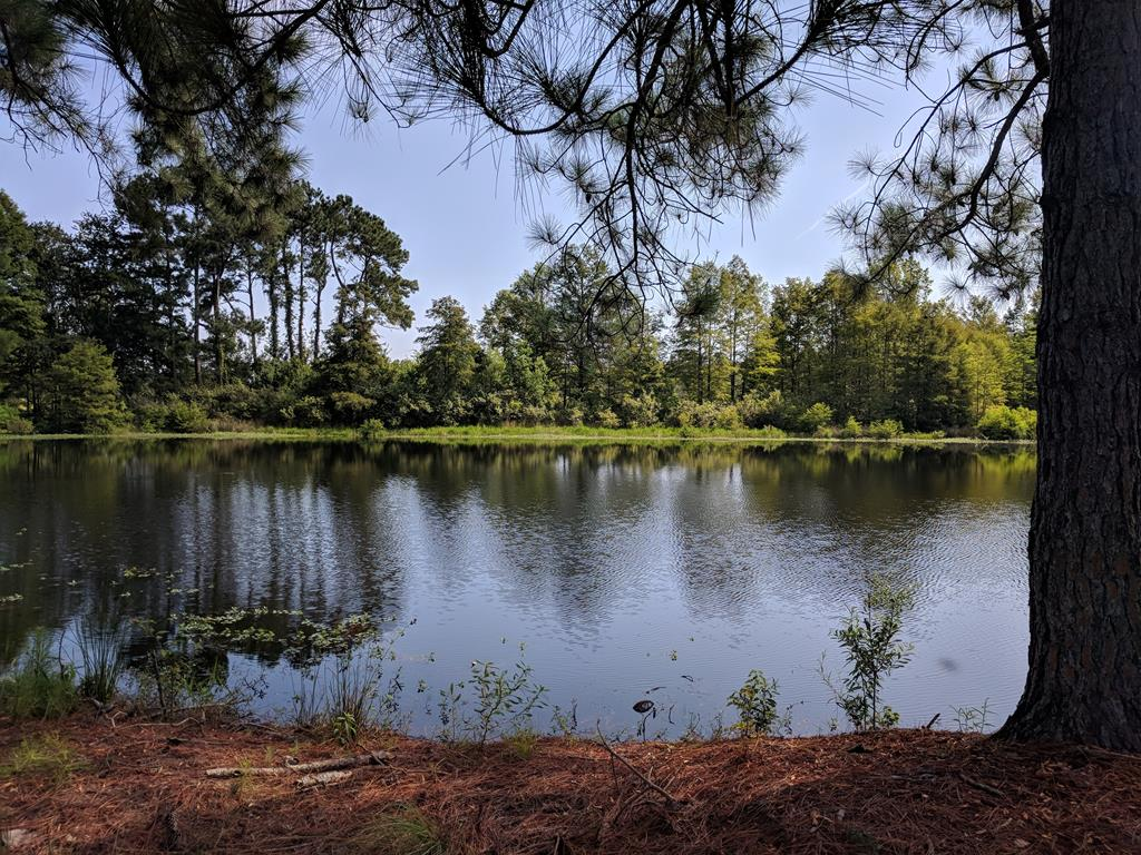 428 Fountain Lake Drive Eutawville, SC 29048