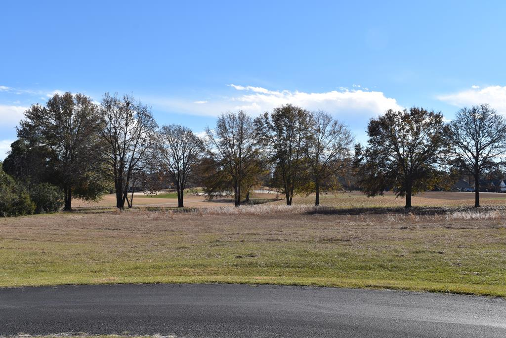 429 Pine Lake Ct (L-10) Manning, SC 29102