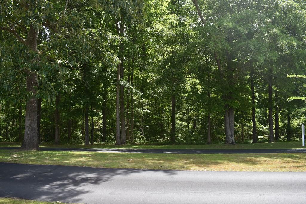 309 Plantation Dr. (A-96) Manning, SC 29102