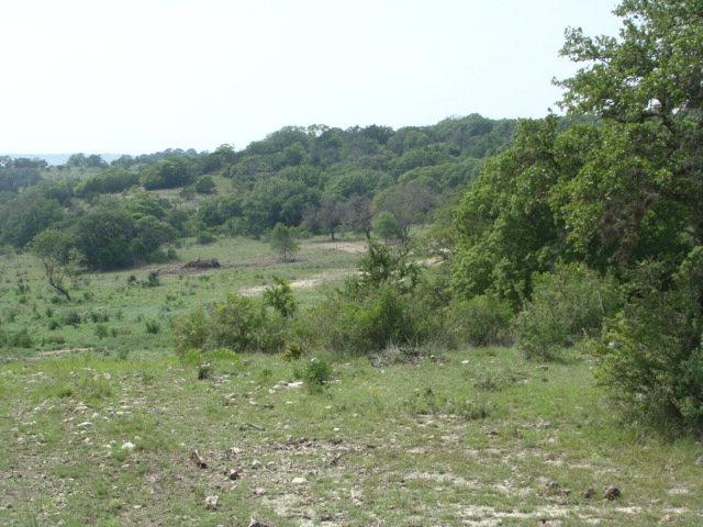 SW Spies Ridge Dr., Fredericksburg, TX 78624