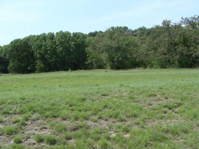 SW Soaring Eagles Dr., Fredericksburg, TX 78624