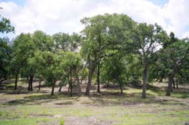 Vintage Oaks Dr, Fredericksburg, TX 78624