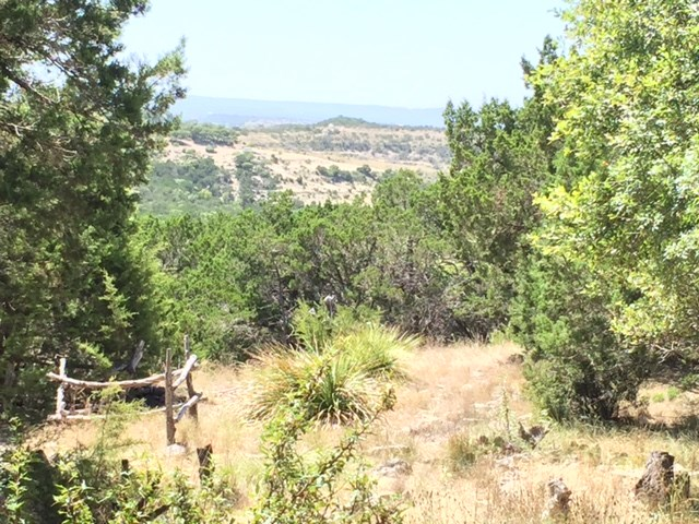 1799 Divide Pass, Blanco, TX 78606