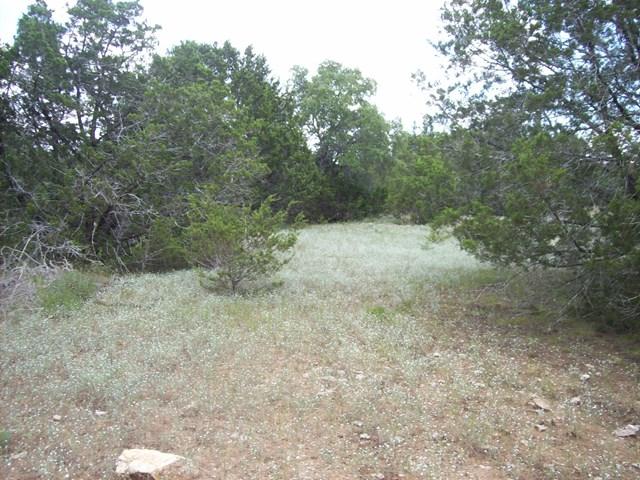Cielo Springs Dr, Blanco, TX 78606