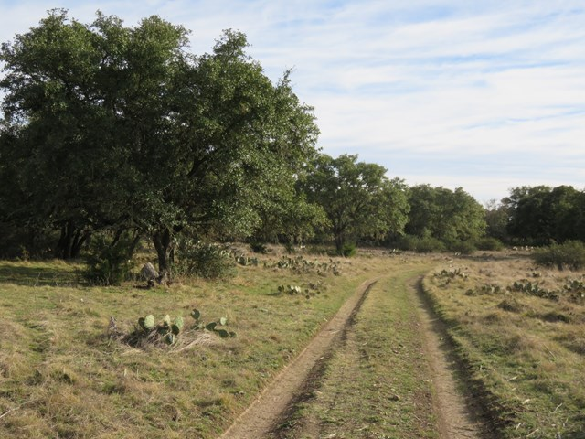 Oak Ridge Trail, Junction, TX 78874
