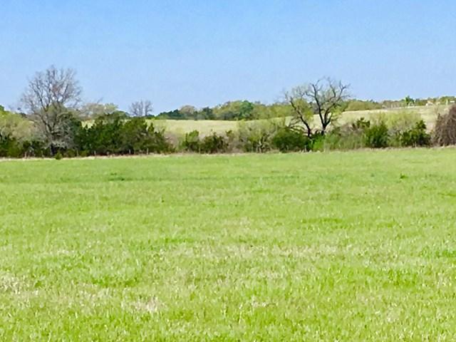 861 NE Kneese Rd, Fredericksburg, TX 78624