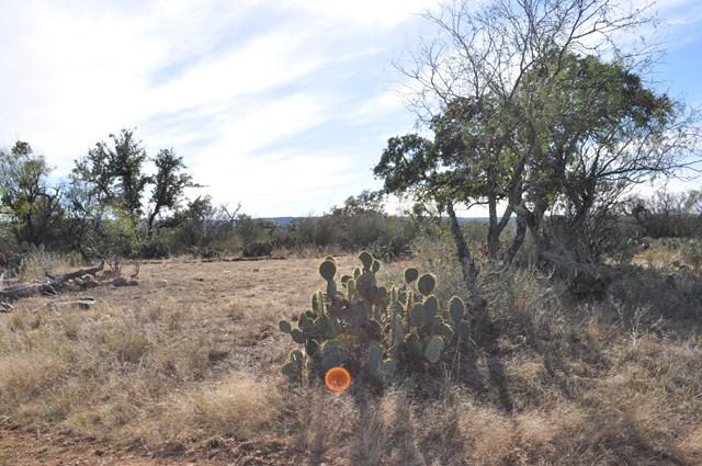 17047 N Ranch Rd 965