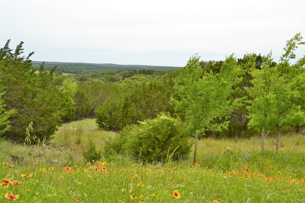 0 N Ranch Rd 965