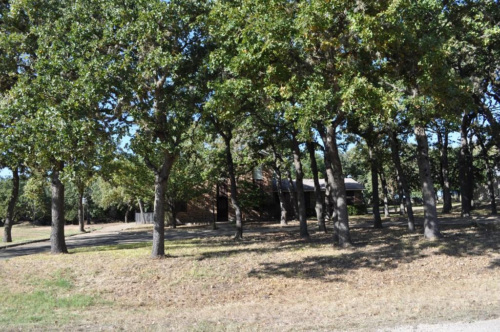 125 Winding Oak Dr