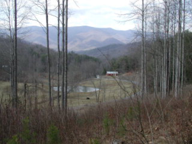 Cold Branch Road, HAYESVILLE, NC 28904