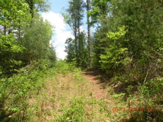Bell Hill Road, MURPHY, NC 28906