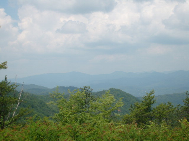 Lords Way, ANDREWS, NC 28901