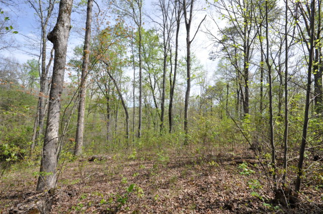 Lot 10 Conners Ridge, YOUNG HARRIS, GA 30582