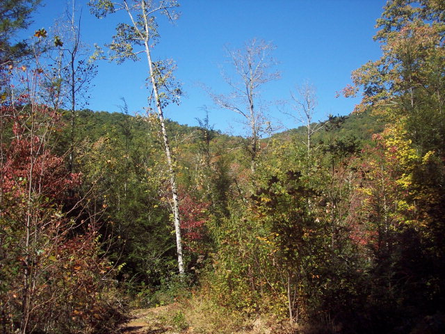 Lot 0 Greasy Creek Road, MURPHY, NC 28906