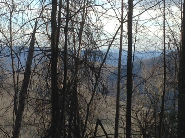 172 ac. Little Snowbird Rd., ROBBINSVILLE, NC 28771