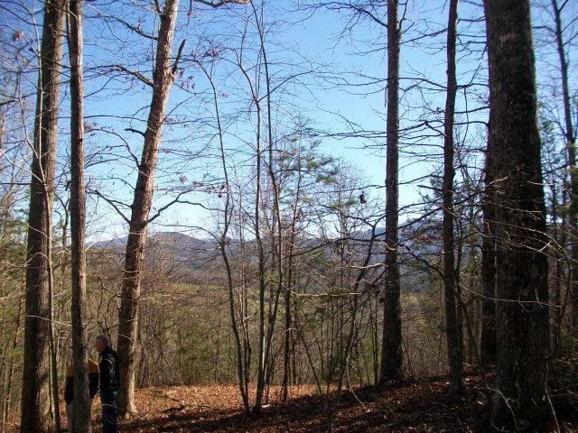 Old House Drive, BRASSTOWN, NC 28902