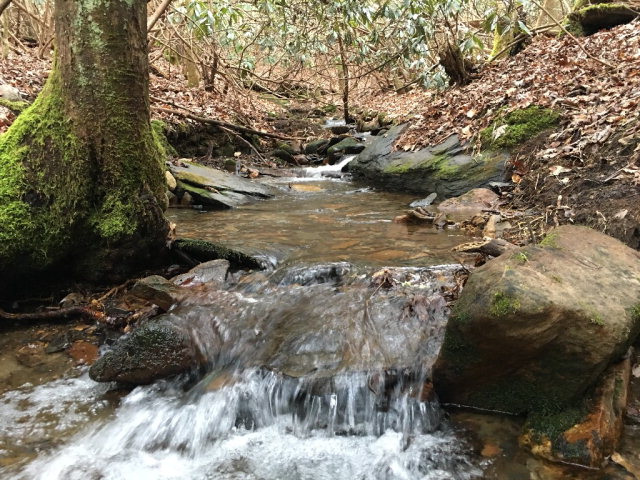 101 Acre Brasstown Road/Spotted Mule Run, BRASSTOWN, NC 28902