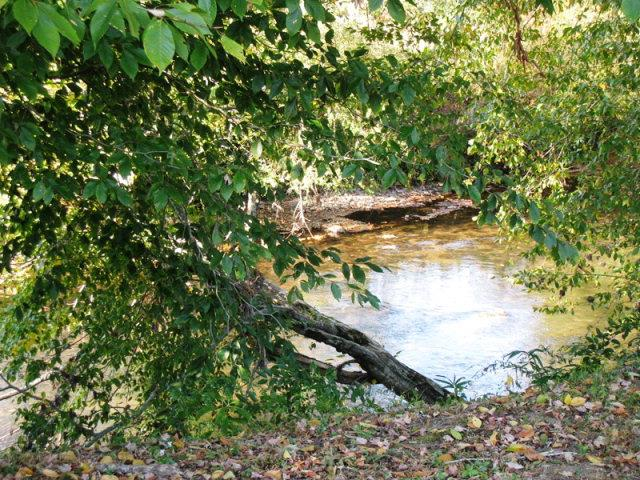 Lot11&12 Leaping Trout Run, MARBLE, NC 28905