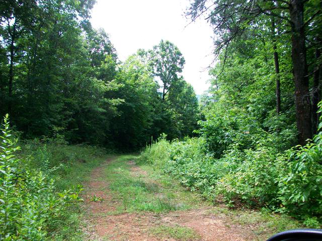 Mouse Creek Trail, MURPHY, NC 28906