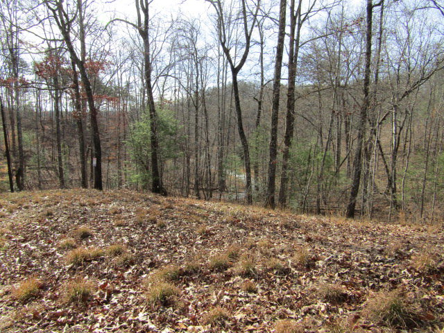 19 Lonesome Pine, MURPHY, NC 28906