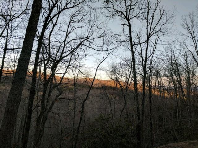 TBD Mystic Forest Way, NANTAHALA, NC 28781