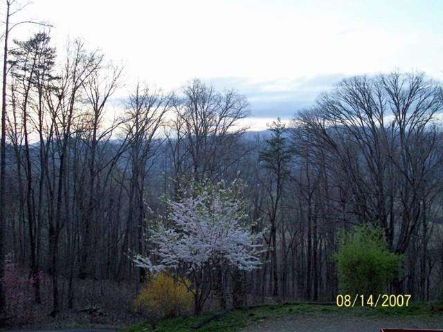 566 Old Cherry Mountain Trail, HAYESVILLE, NC 28904