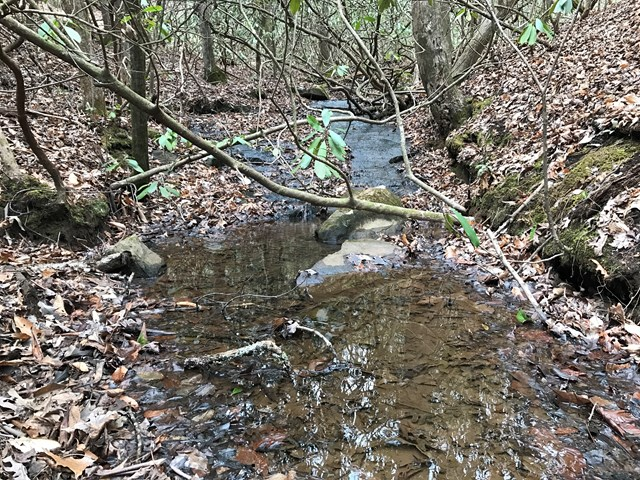 55 Acres Hiwassee Dam Access Road, MURPHY, NC 28906