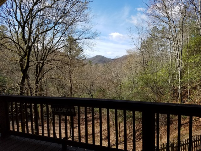 181 Little Cove Trail, HAYESVILLE, NC 28904