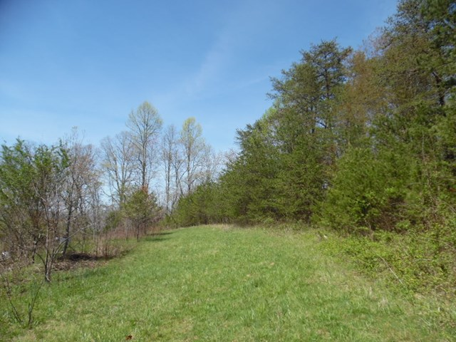 000 Nicely Rd, HAYESVILLE, NC 28904