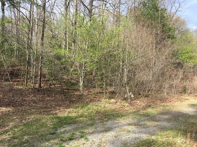 TR-30 Forest View Drive, MURPHY, NC 28906