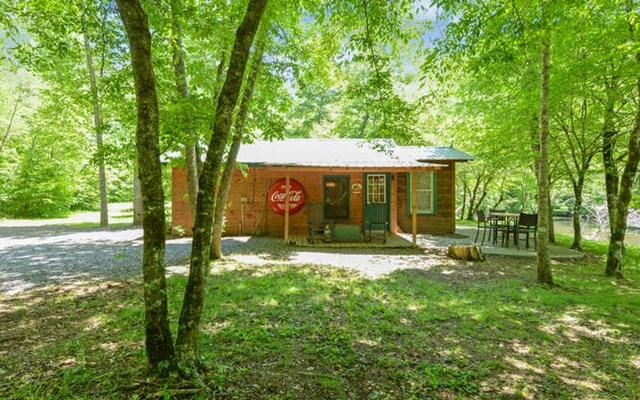 900 Blue Ridge Park Drive, HAYESVILLE, NC 28904