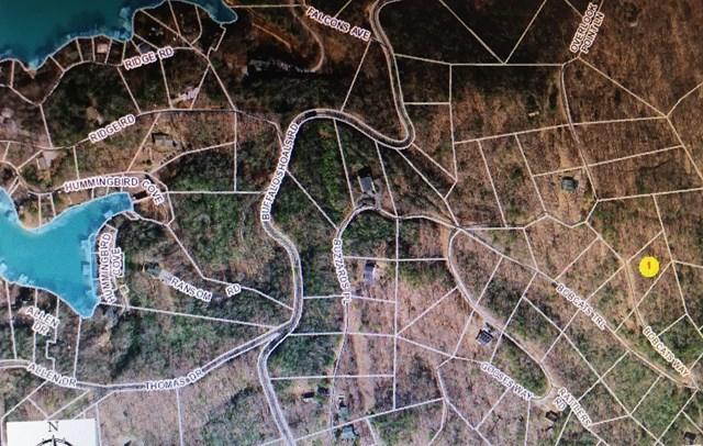 Bobcats Way, NONE, NC 28746